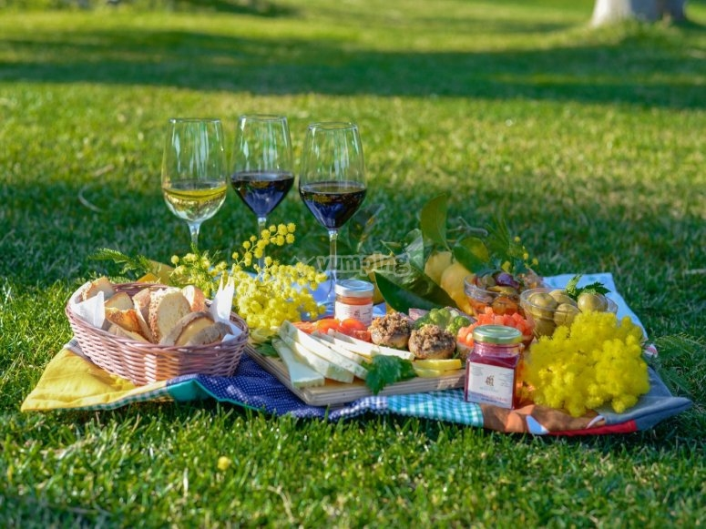 Picnic on the meadow