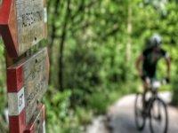 Escursione in MTB in Toscana di 4 ore
