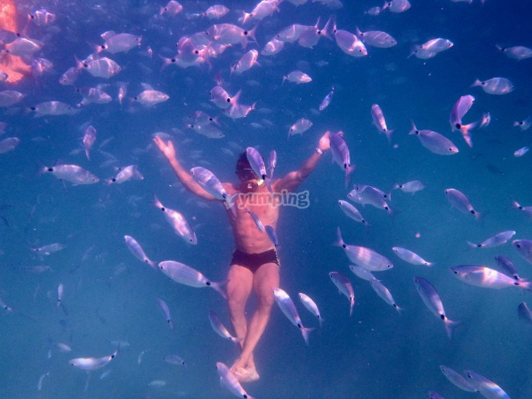 bath with fish6
