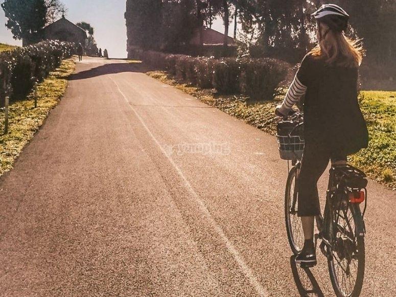 In e-bike