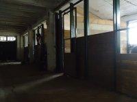 Le nostre stalle