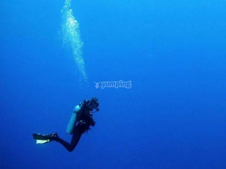 Diving in Puglia