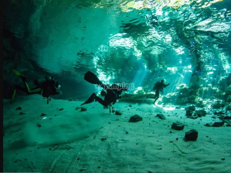 Incredible seabed