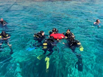 Junior diving course 10 lessons Fermo