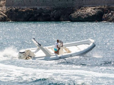 4-hour Gulf of Palermo tour by rubber dinghy