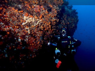 Open Water Diver Course Catania 4/5 days