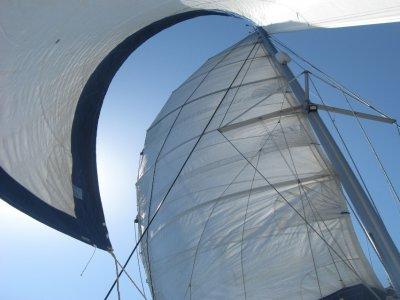 Navigare Con Le Stelle Vela