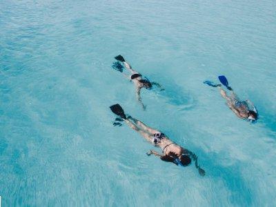 Snorkeling guidato ad Otranto 1 Ora