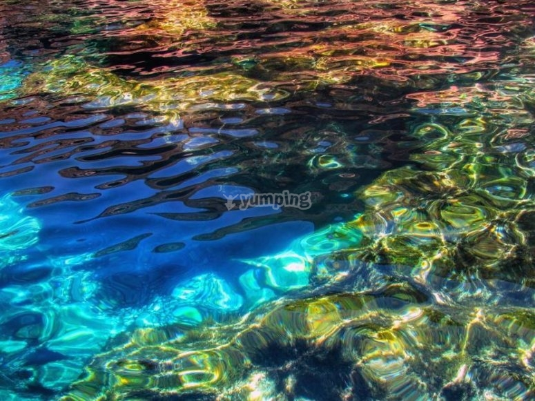 snorkel in the crystal clear waters of the Egadi