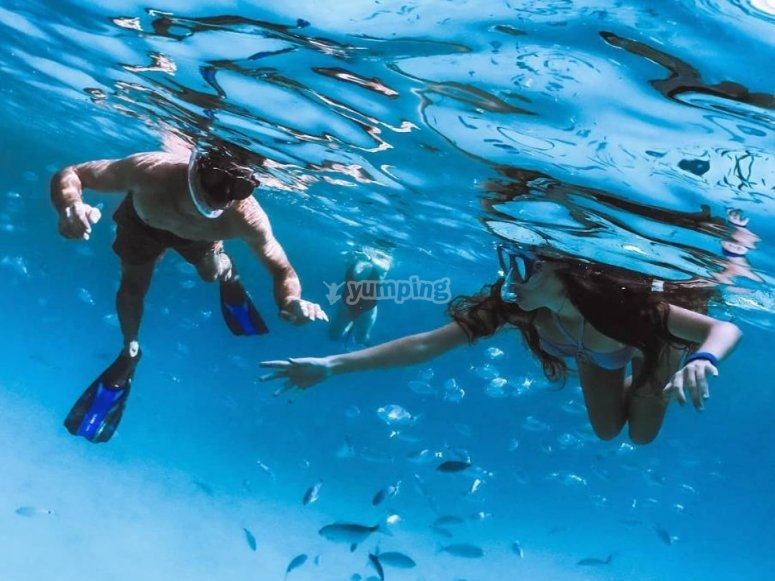 snorkeling nei fondali del Tirreno