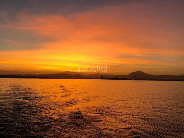 tramonto con i delfini - copia