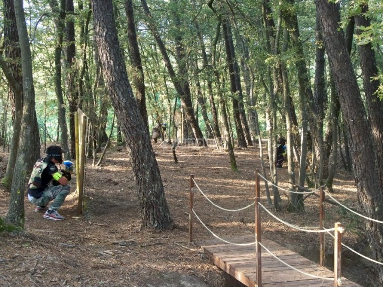 Campo di paintball