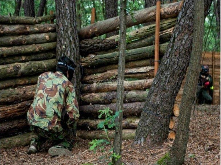 Nascosti nel bosco
