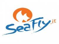 Sea Fly Badolato Marina Flyboard