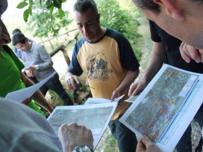 Trentino Outdoor Camp Orienteering