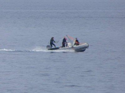 Blue Zone Sardinia Wakeboard