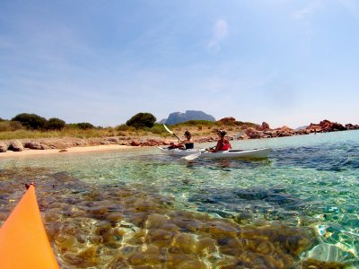 Tour in kayak per l'isola di Tavolara di 4 ore