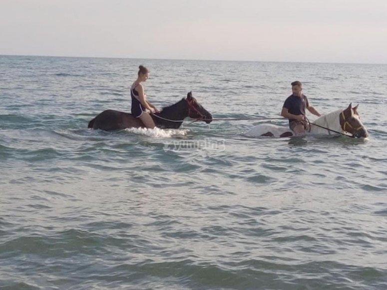 il bagno con i cavalli