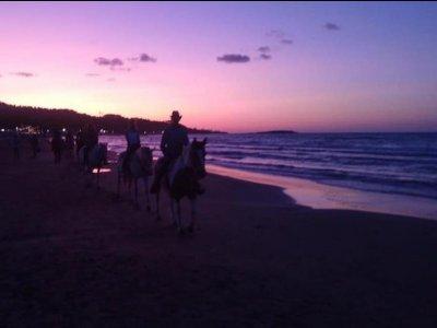 Tour a cavallo in spiaggia al Monticello di 3 ore