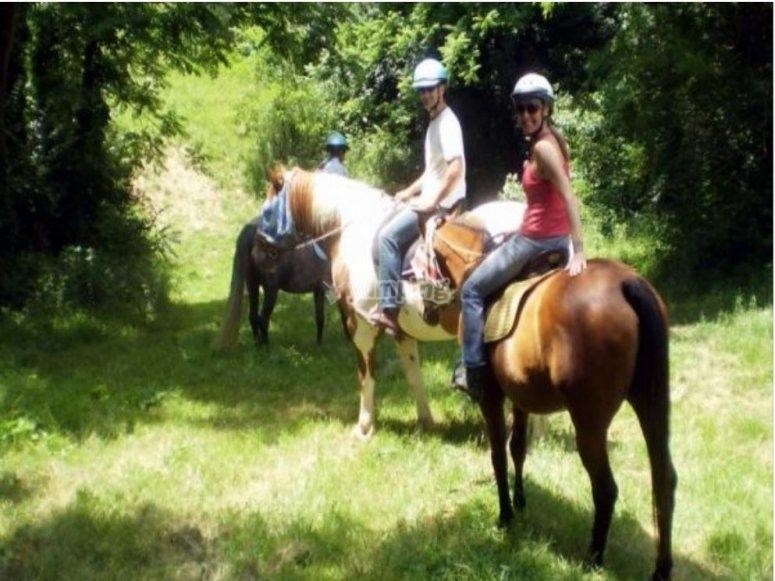 On horseback in the woods