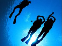 Oliflow diving