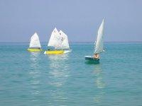 Lezioni di vela in gruppo
