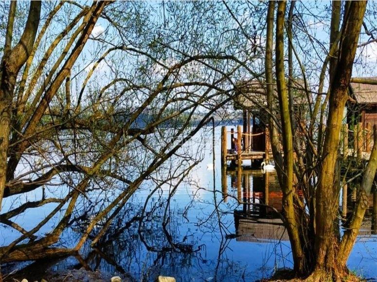 Nei pressi del lago