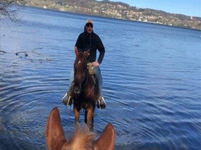 Passeggiata a cavallo al Lago di Viverone di 2 ore