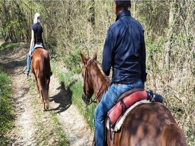 Passeggiata a cavallo a Bric della Vigna di 1 ora