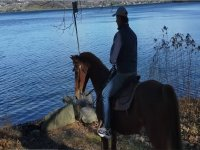 Passeggiata a cavallo sul Lago di Viverone