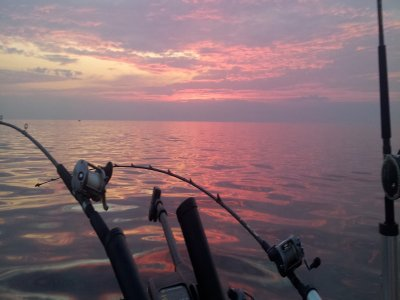 Vip Sailing Pesca