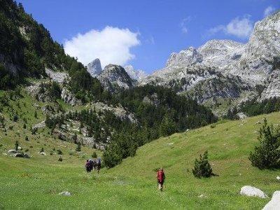 Cai Foligno Trekking