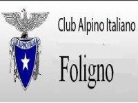 Cai Foligno
