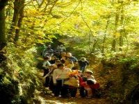 Escursioni del gruppo giovanile