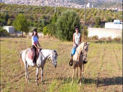 Passeggiata a cavallo nella campagna di Noto 1 ora