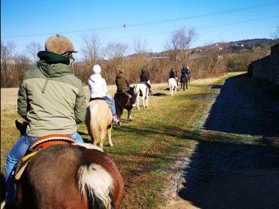 Tour in cavallo con degustazione Val di Ronchi 2h