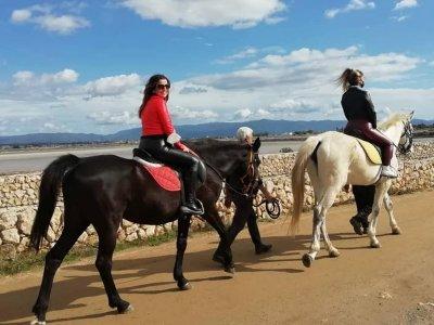 Horse tour Molentargius Park 1 hour