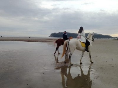 Horse riding tour in Poetto beach 1 hour