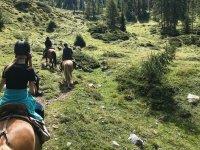a cavallo tra le colline della Lombardia