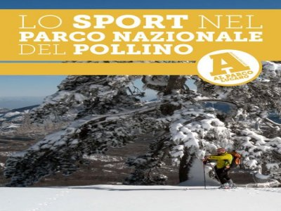 PollinoSport