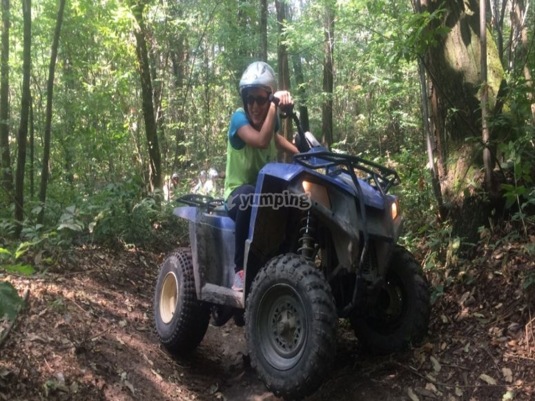 In the woods on four wheels