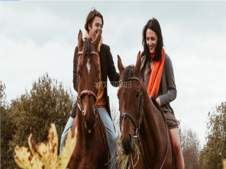 Horse ride in Sesto Calende