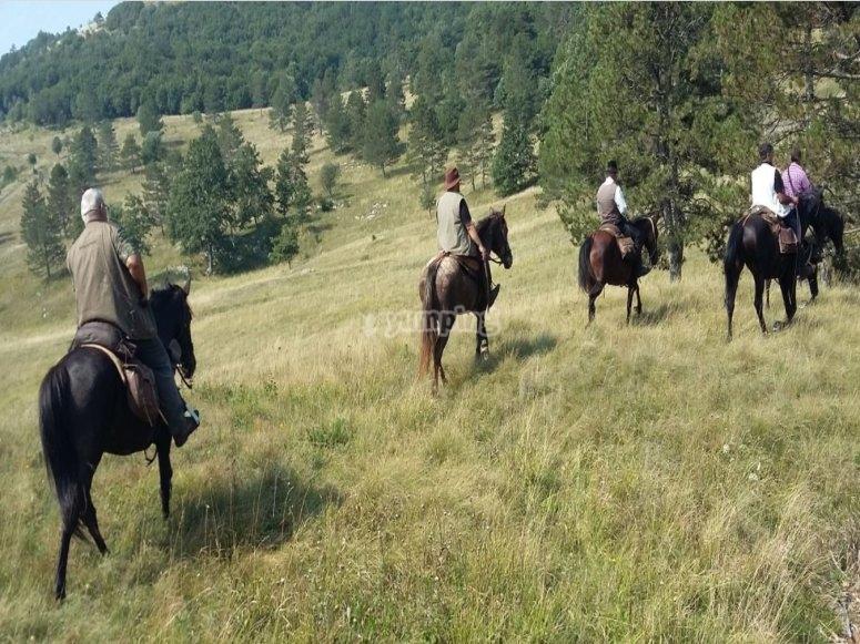 Passeggiata a cavallo Trieste