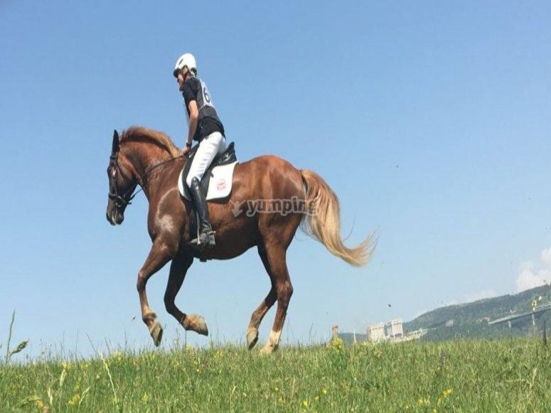 In sella al nostro cavallo