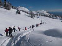 Una bella ciaspolata sulla neve fresca