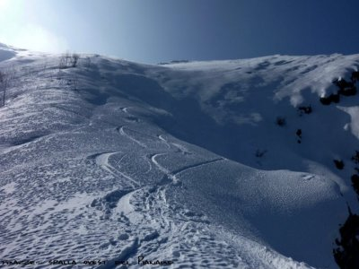 Mountain Season Snowboard