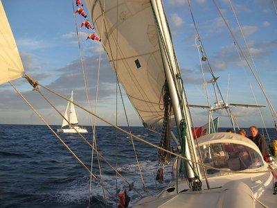 Timone Charter Escursione in Barca