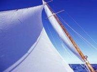 Noleggiamo splendide barche