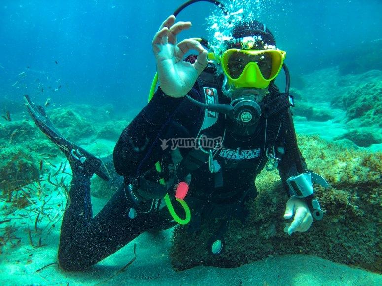 Diving dive in Sardinia