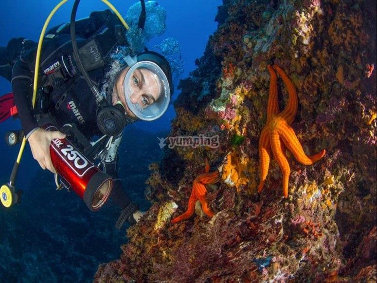 unique seabed